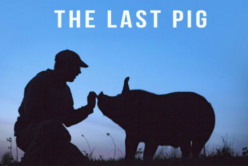 Last pig poster