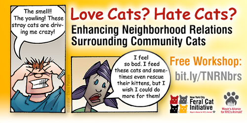 Enhancing Neighborhood Relations Surrounding Community Cats