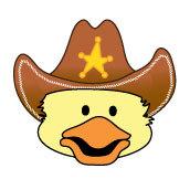 Cd cowboy hat