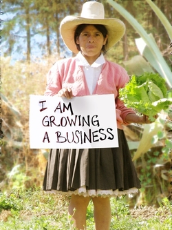 _4_growing_a_biz_for_web