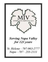 Miv logo 1