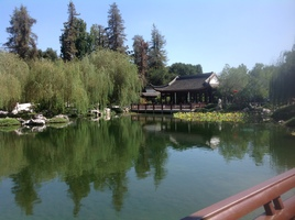 Chinese garden at the huntington