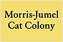 Logomorrisjumelcatcolony 125