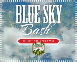 Blue sky bash web logo