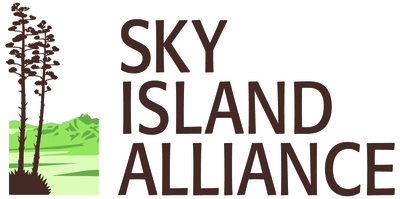 Sia interim logo