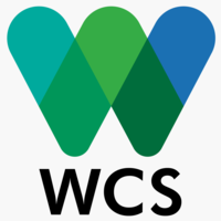 Wcs logo detail