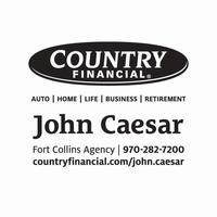 Caesar advertising logo  2