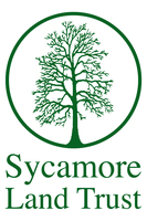 Sycamore one tree logo text