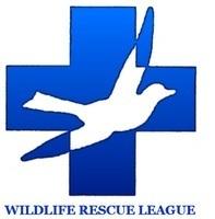 Wrl logo  1