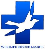 Wrl logo jpg  002