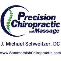 Precision chiro official logo square