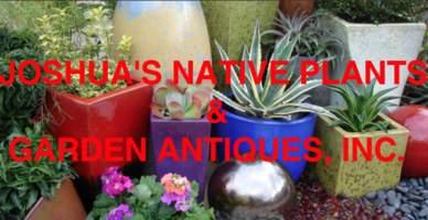 Joshua s native plants and garden
