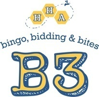 B3 logo