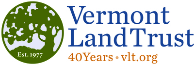 Vlt 40th logo w alt type color