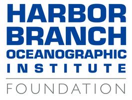 Hboi foundation square logo