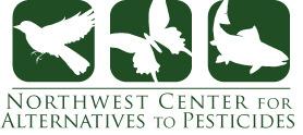 Ncap green logo