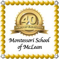 40th logo sample 2 msmclean
