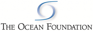 The ocean foundation logo 300x102