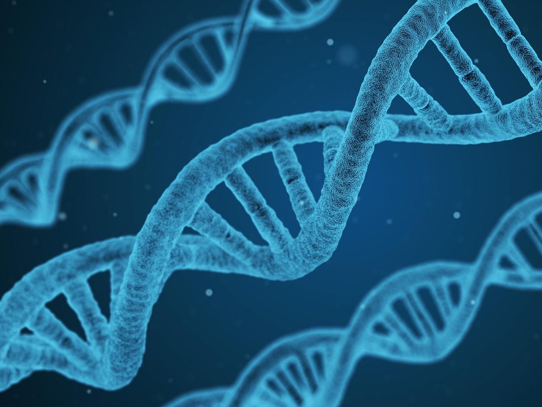 Rendering of DNA helix