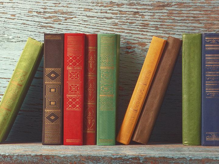 Books line the wall of a shelf.