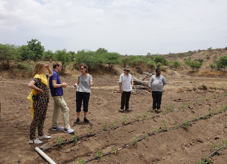 Georgetown students examine a drip irrigation system