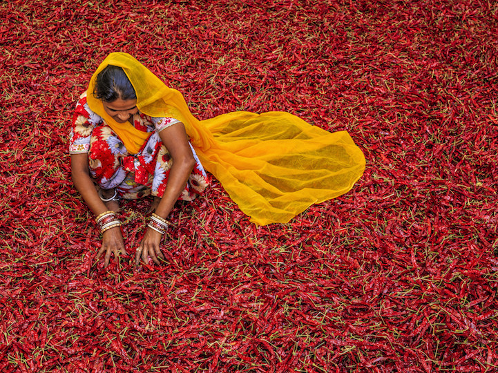 Women crouched on floor full of chili peppers