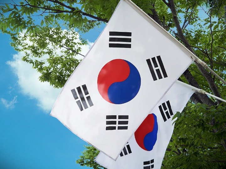 Two South Korean flags against the backdrop of a blue sky and tree branches.