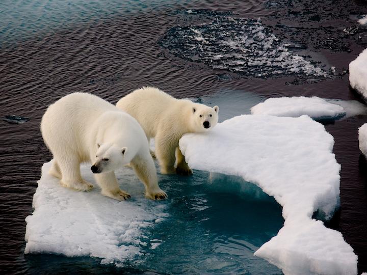 美中气候变化对话背景报告