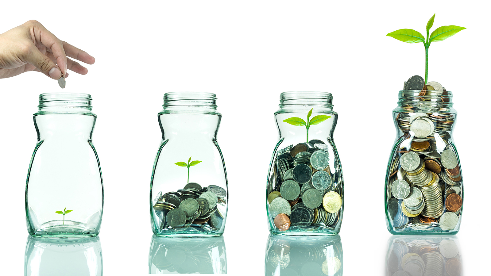 Seed growing in glass jar with coins