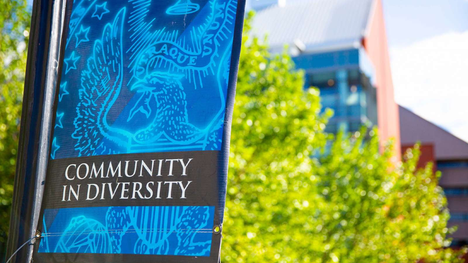 """Banner with the Georgetown University seal and words """"Community in Diversity"""""""