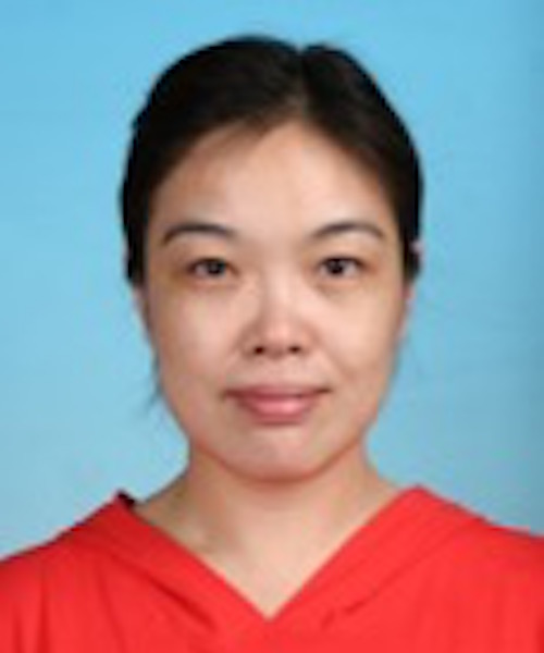 Professor Hao Min bio photo.