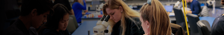 Undergraduate Students Working in Lab
