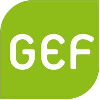 Green european foundation