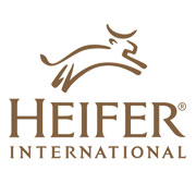 Heirfer international