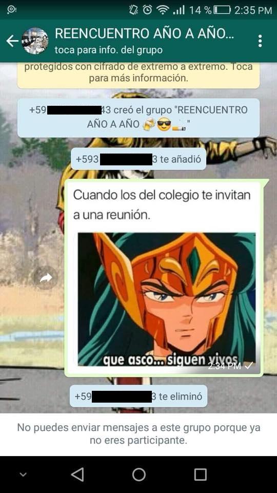 Whatsapp Publicó Este Meme En Chat Grupal Y Terminó Expulsado
