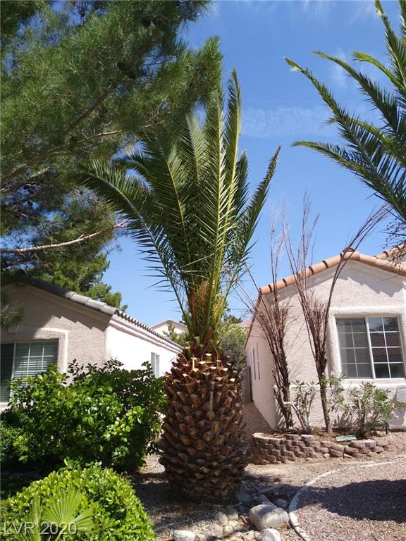 3171 Castle Canyon Ave Henderson, NV 89052 - Photo 2