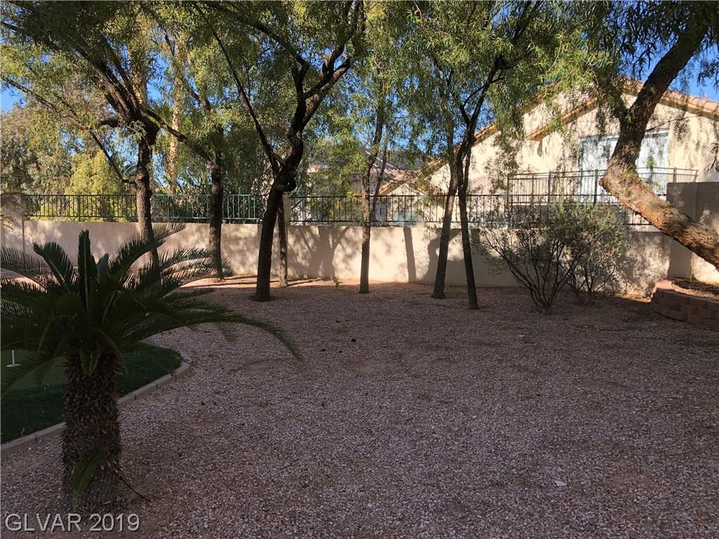 1256 Rising Cloud Cir Henderson, NV 89052 - Photo 38