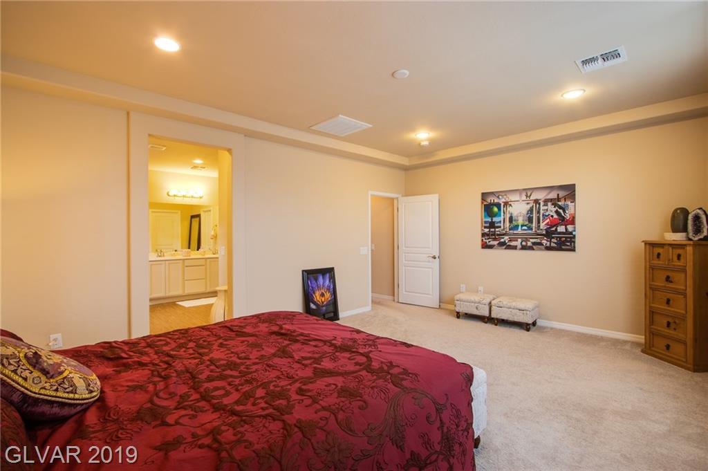 7667 Dewy Falls Ave Las Vegas, NV 89179 - Photo 13