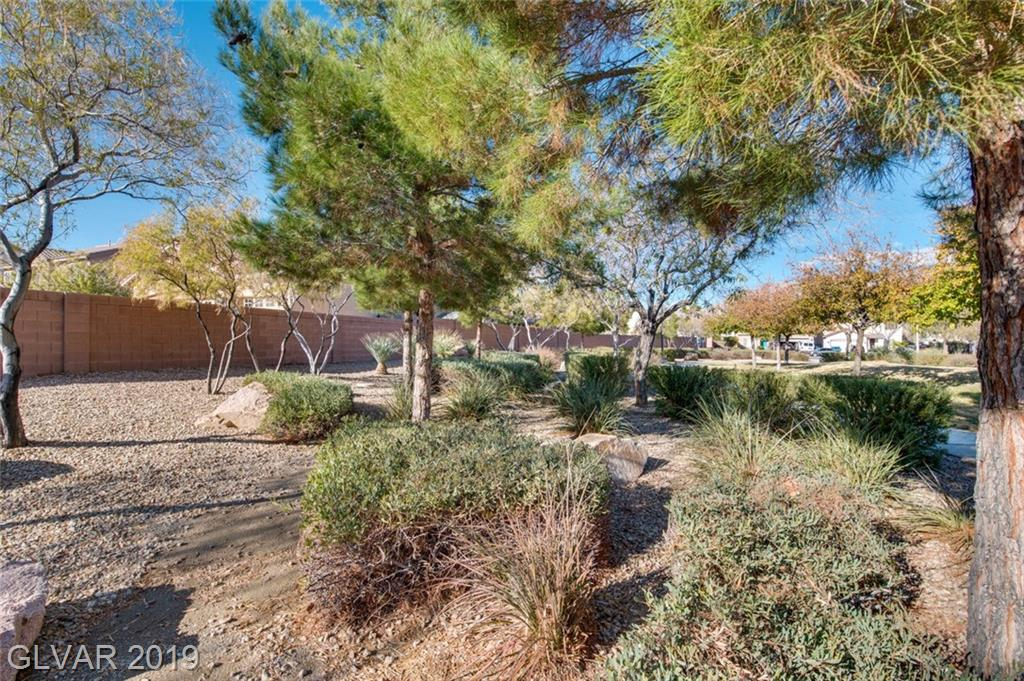 5608 Cricket Flat Ct Las Vegas, NV 89131 - Photo 49