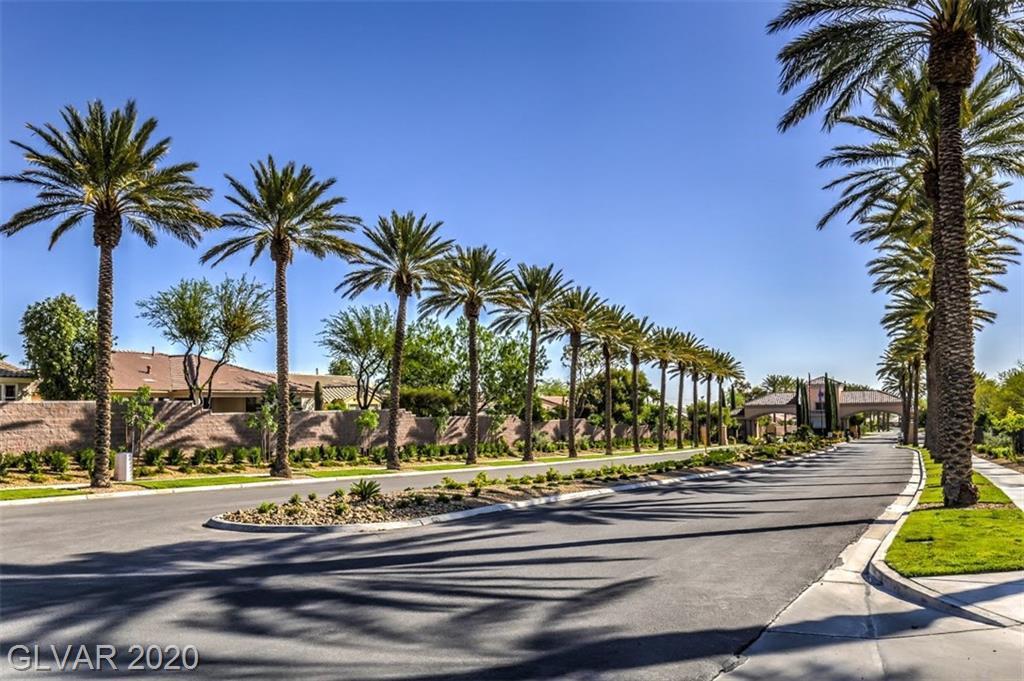 10519 Riva De Fiore Ave Las Vegas, NV 89135 - Photo 23