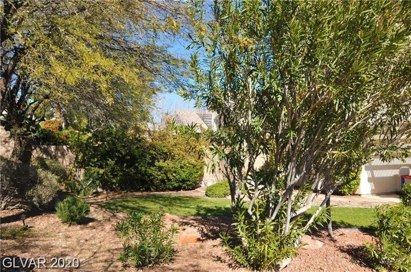 2943 Branch Creek Ct Las Vegas, NV 89135 - Photo 13