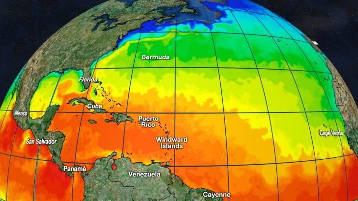 Tropics Watch Sea Temperature