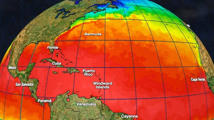 Tropics Watch Sea Temperature