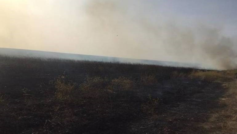 Crop fires destroy 1500 hectares in eastern Syria