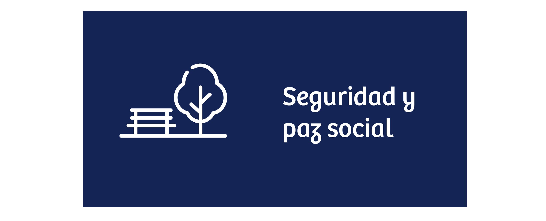 Seguridad y paz social