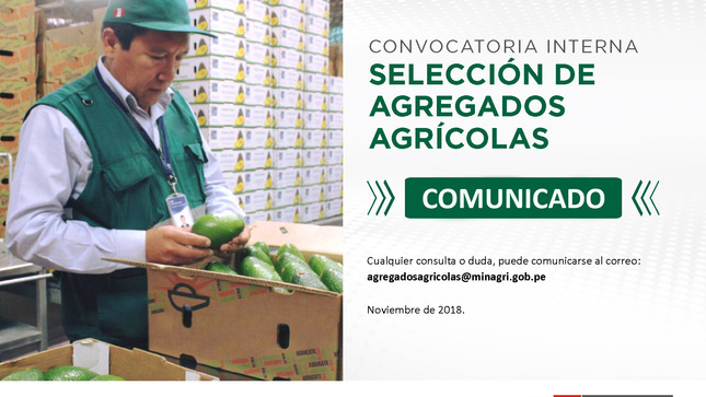 Standard comunicado convocatoria nov 2 01 copy