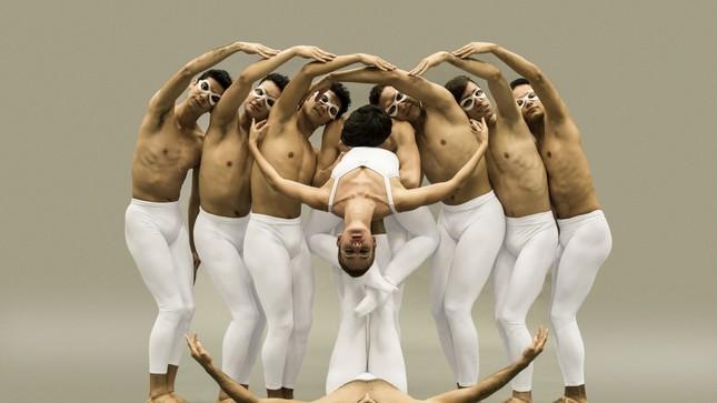 Standard tercera temporada 2018 ballet 03