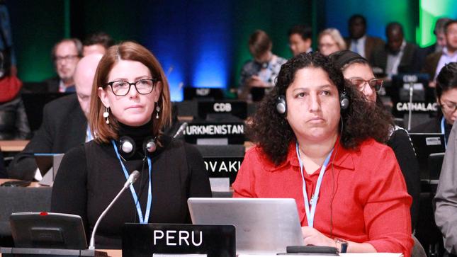 COP24: Perú acelera su acción frente al cambio climático