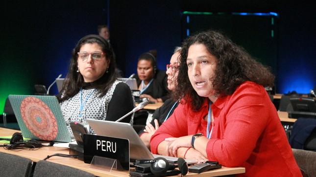Perú en COP24: Apostamos por más inversiones bajas en carbono para enfrentar el cambio climático