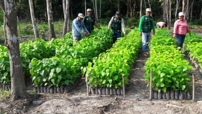 MINAGRI Y MINAM iniciarán Proceso Participativo para Reglamento de Protección y Gestión Ambiental del sector Agricultura